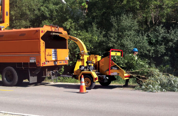 Commercial Tree Services-Cooper City FL Tree Trimming and Stump Grinding Services-We Offer Tree Trimming Services, Tree Removal, Tree Pruning, Tree Cutting, Residential and Commercial Tree Trimming Services, Storm Damage, Emergency Tree Removal, Land Clearing, Tree Companies, Tree Care Service, Stump Grinding, and we're the Best Tree Trimming Company Near You Guaranteed!