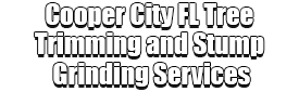 Cooper City FL Tree Trimming and Stump Grinding Services