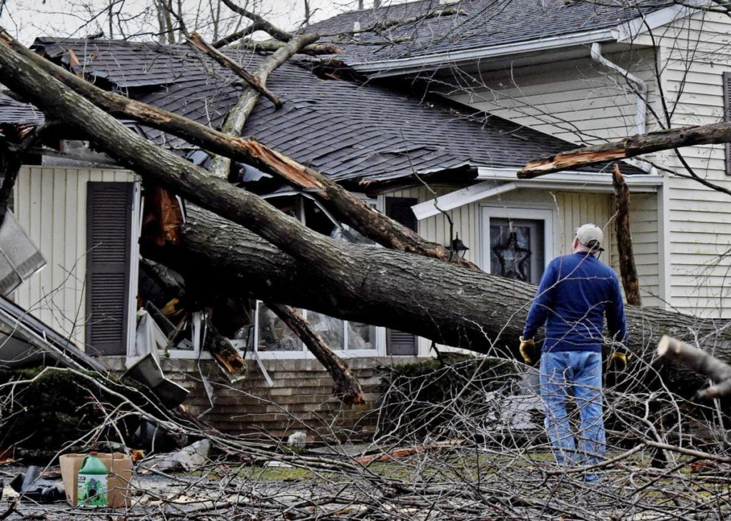 Storm Damage-Cooper City FL Tree Trimming and Stump Grinding Services-We Offer Tree Trimming Services, Tree Removal, Tree Pruning, Tree Cutting, Residential and Commercial Tree Trimming Services, Storm Damage, Emergency Tree Removal, Land Clearing, Tree Companies, Tree Care Service, Stump Grinding, and we're the Best Tree Trimming Company Near You Guaranteed!